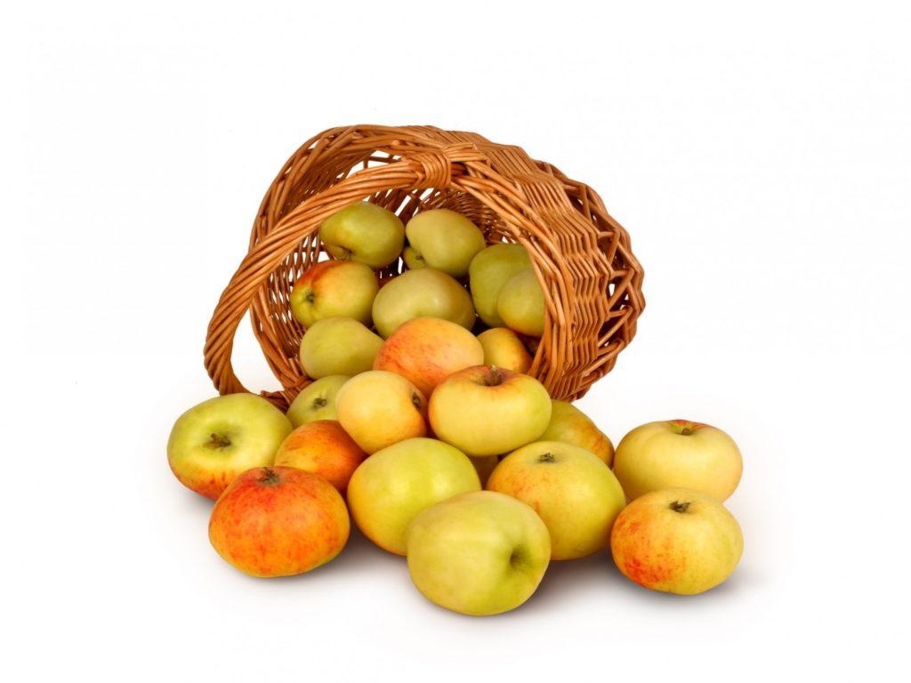 """Pommes, confitures, gelées et jus de pommes bio """"Les vergers de la Ville Etienne"""" Bernard Ferre,  Montauban-de-Bretagne"""